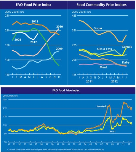 GLOBAL FOOD PRICE INDEX