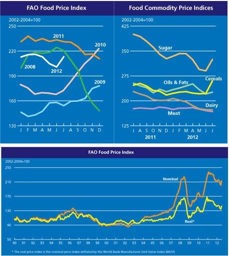 GLOBAL FOOD PRICE INDEX